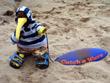 Hoody Surfer 1