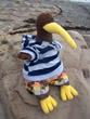 Beach Kiwi 1