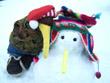 Snow Kiwi 3